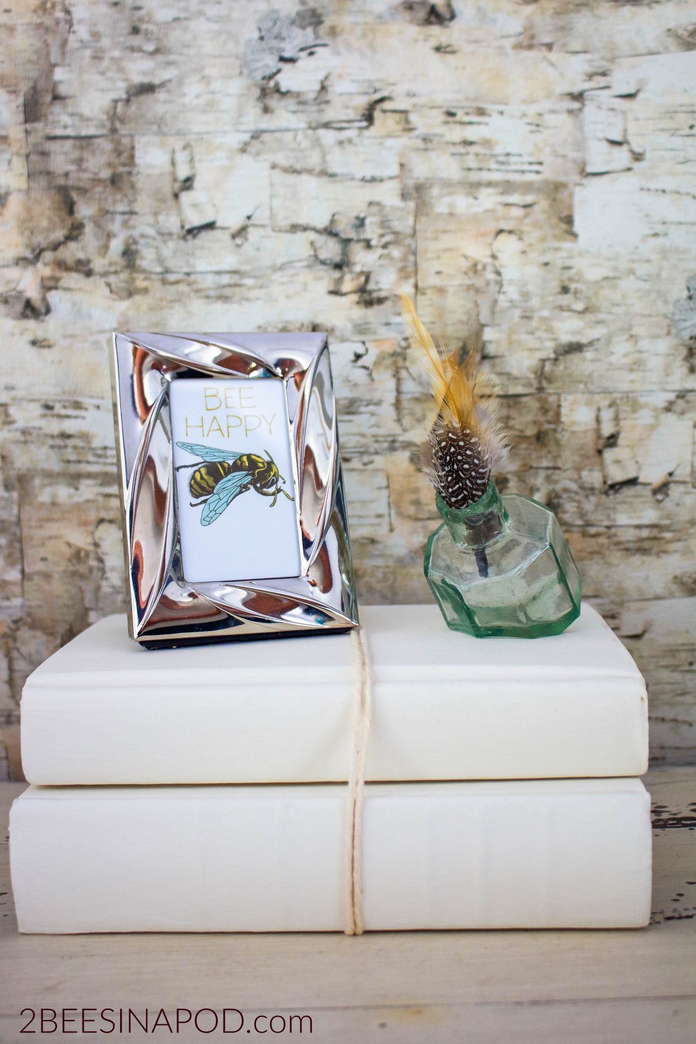 Chalk Paint Books for Decor - 2 Bees in a Pod