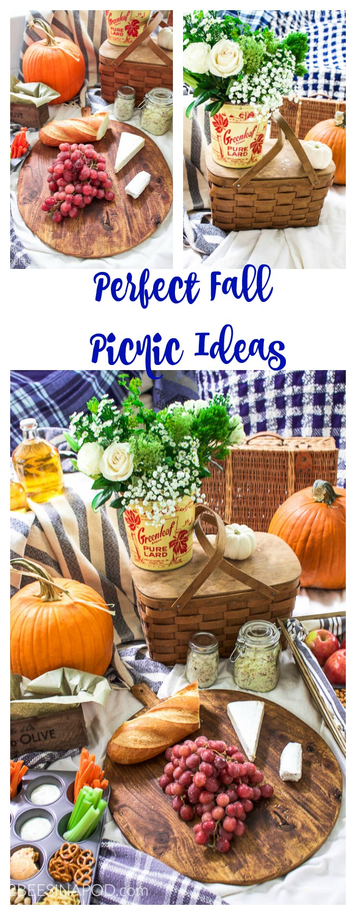 Perfect Fall Picnic Ideas - you can't go wrong with a fall picnic and these great ideas.