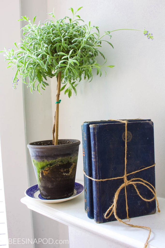 Casual Lake Summer Mantel Decor. Lavender topiary and vintage blue books are perfect for a summer mantel.