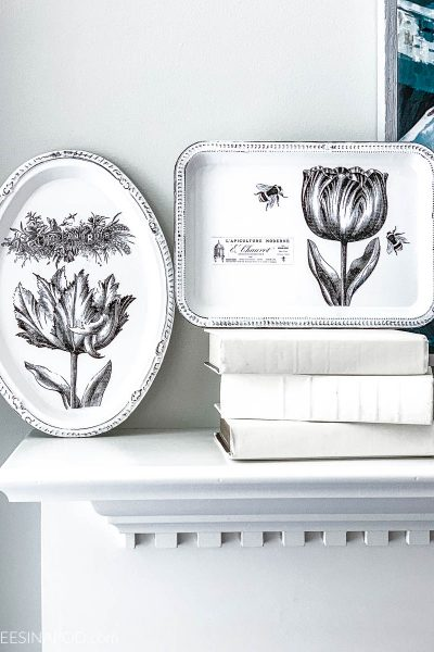 Chalk Painted Trays with French Graphics – My Dollar Store DIY