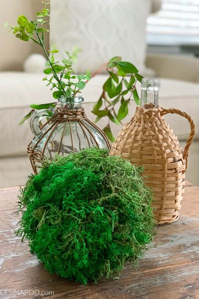 How to Make Extra Large Moss Balls