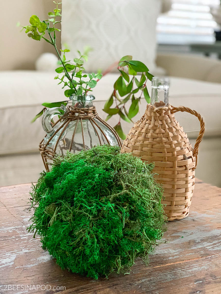 How To Make Extra Large Moss Balls 2 Bees In A Pod