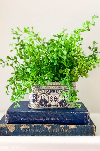 Easy DIY Vintage Tin Planter – Using a Smith Brothers Cough Drop Tin
