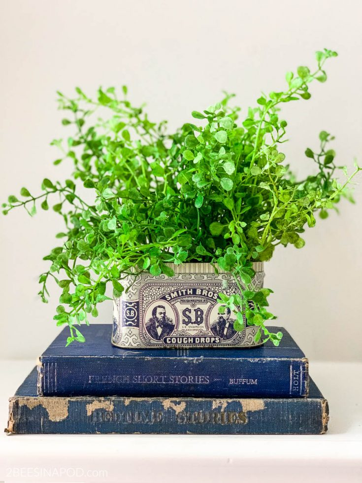 Easy DIY Vintage Tin Planter - Using a Smith Brothers Cough Drop Tin