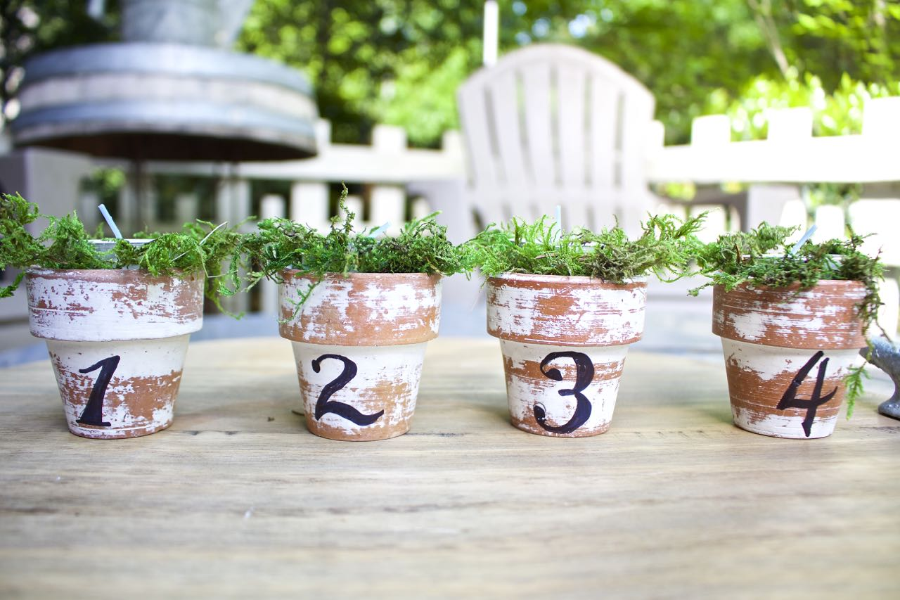 5 simple spring projects
