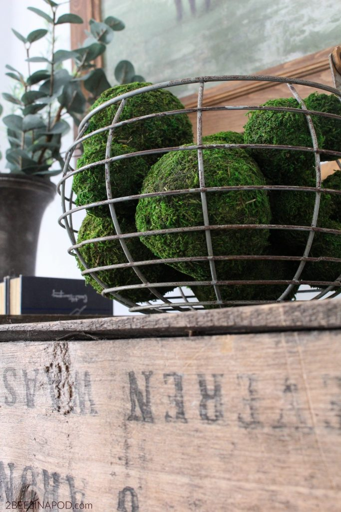 Living room farmhouse moss balls