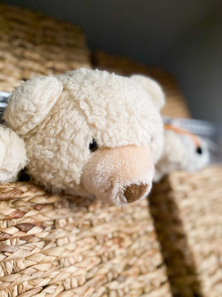 Teddy Bear Nursery Closet