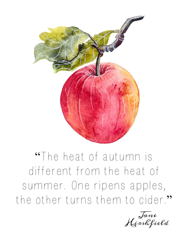 Free Fall Apple Printable - 2 Styles. Apple Quote.